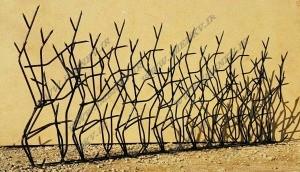 عکس حفاظ شاخ گوزنی